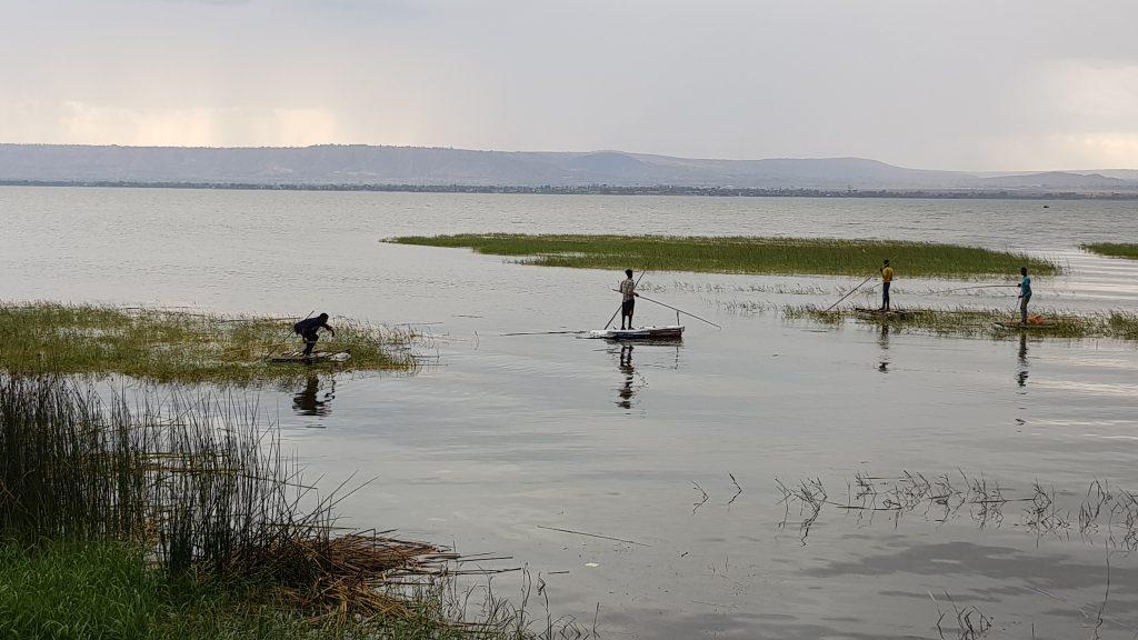 Arrivée au lac Awasa