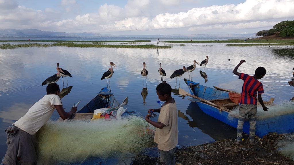 Pêcheurs et Marabouts d'Afrique, Lac Awassa